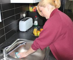 DPC domestic cleaner